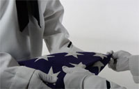 More Than Just a Flag