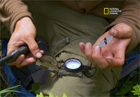 How to Make a Field Expedient Compass
