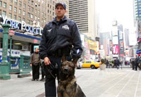 Army Vet, Military Dog Keep NYC Safe