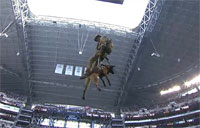 Military Dog Rappels to Deliver Game Coin