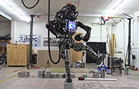 Atlas Robot Does Karate Kid Crane Stance