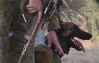 Mobility Guardian 17: Dog Handlers