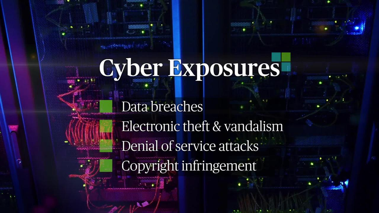 Cyber Risk - Part 1